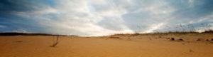 Drought/Sand/No green plants