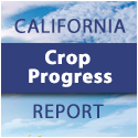 California Crop Progress Report