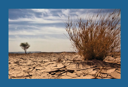 Boman Associates | MPCI | Parched land photo