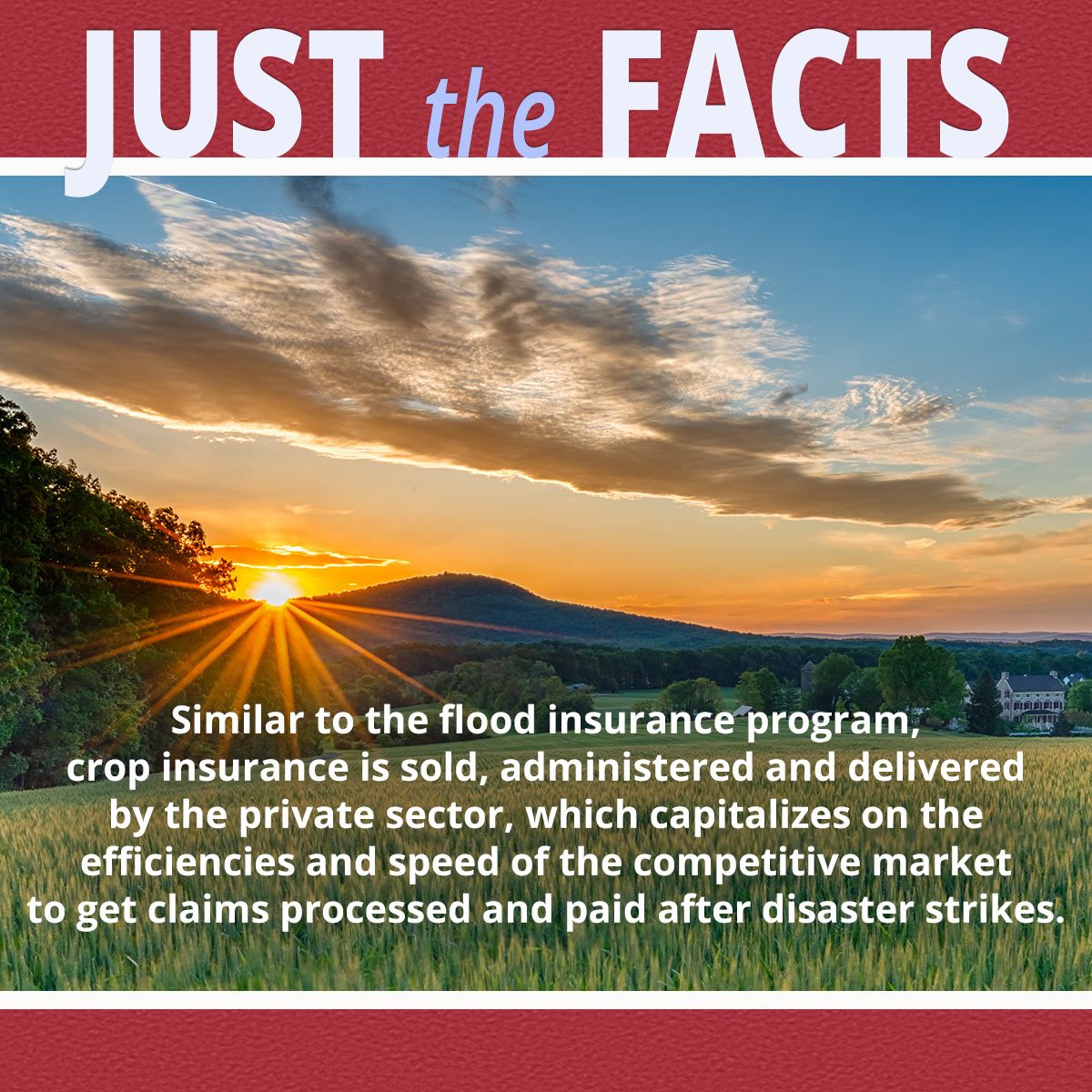 Boman & Associates | Crop Insurance | Crop insurance is adminstered by the Private Sector